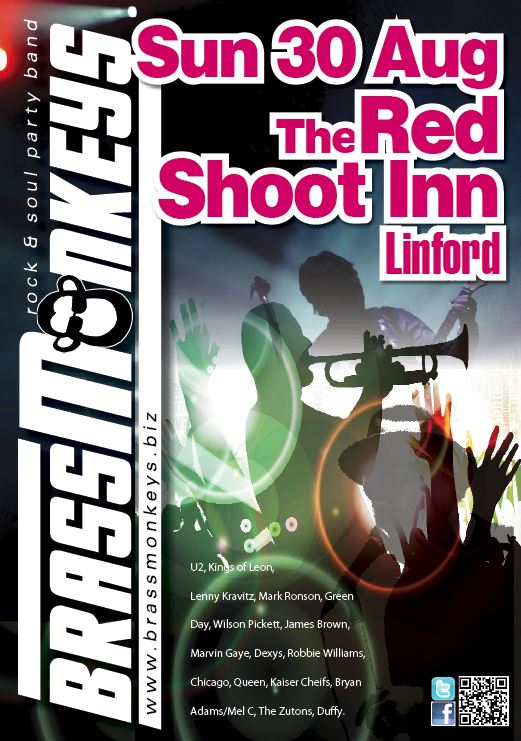 BrassMonkeys band at the Red Shoot Linford New Forest Sun 30 August